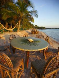 Seashell and Palm Leaves on a Table and Chairs on a Beach with Palms by Raul Touzon