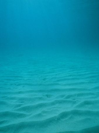Underwater Shot of Clear Blue Water off of the Virgin Islands