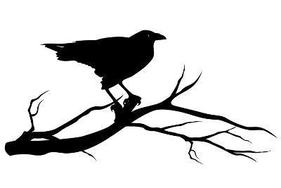 Raven Bird Silhouette-Cattallina-Art Print