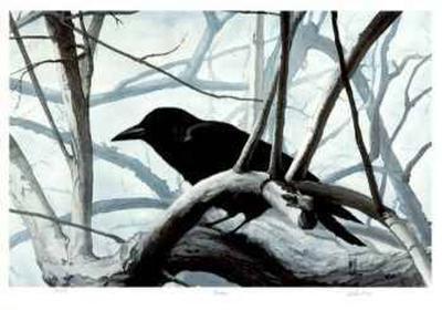 Raven-Carl Arlen-Collectable Print