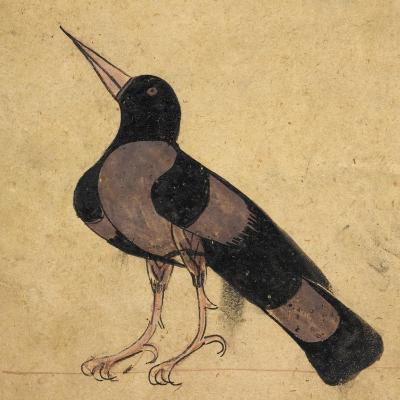 Raven-Aristotle ibn Bakhtishu-Giclee Print