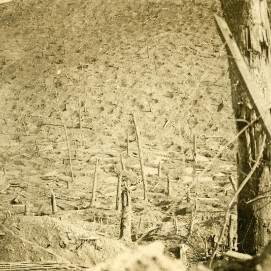 Ravine at Les Éparges, northern France, c1914-c1918-Unknown-Photographic Print