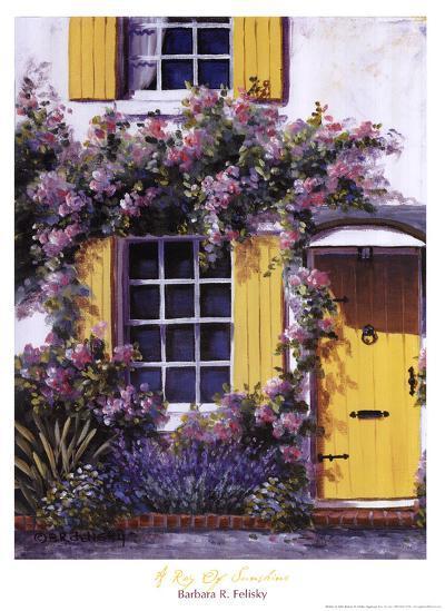 Ray of Sunshine-Barbara Felisky-Art Print