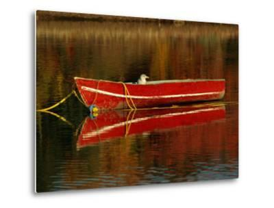 A Gull Rests on an Old Rowboat