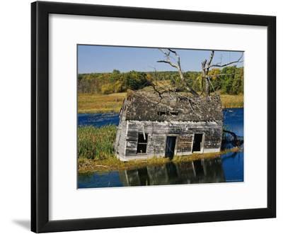 Marsh Reclaims an Abandoned Homestead