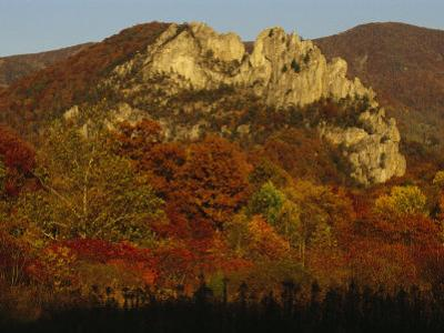 Seneca Rocks,900-Feet-High, with Trees in Autumn Hues
