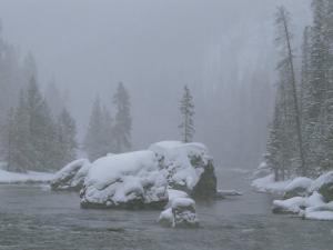 Snow Storm, Firehole River by Raymond Gehman