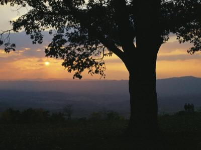 Sunset and Silhouetted Oak Tree over the Shenandoah Valley, Dickeys Ridge Visitors Center by Raymond Gehman