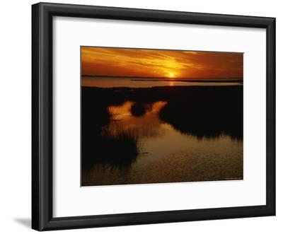Sunset over a Salt Marsh with Cordgrass