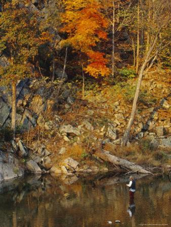 Trout Fisherman in the North Fork of the Potomac River