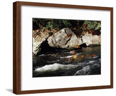 Water Rushing Past Boulders Along the Banks of the Nantahala River