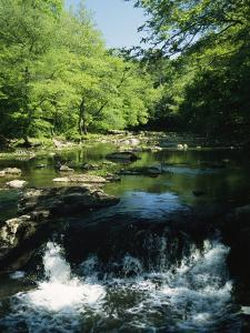 Waterfalls on the Eno River Passing Through a Hardwood Forest by Raymond Gehman