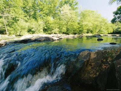 Waterfalls on the Eno River Passing Through a Hardwood Forest
