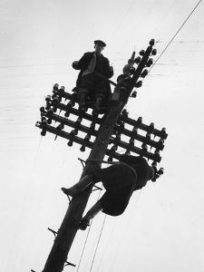 Telegraph Pole by Raymond Kleboe