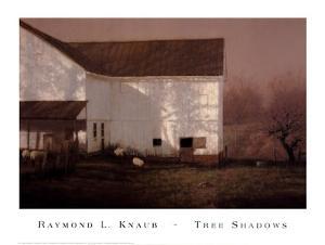 Tree Shadows by Raymond Knaub