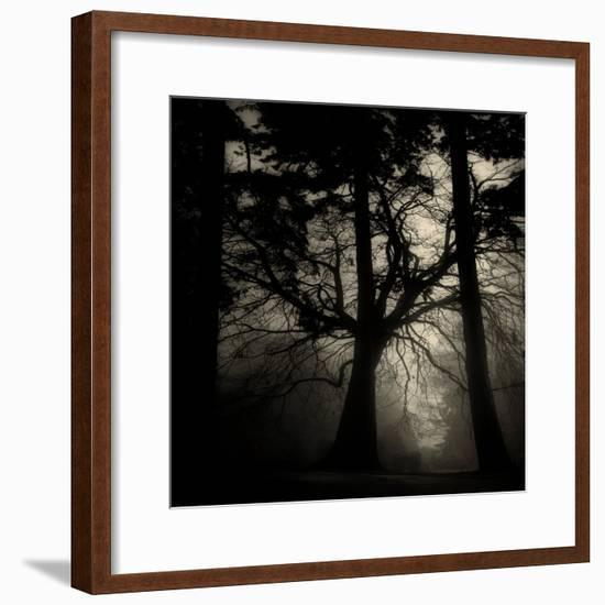 Realpoint-Sharon Wish-Framed Photographic Print