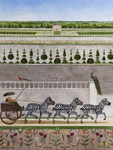 A Zeal of Zebras by Rebecca Campbell