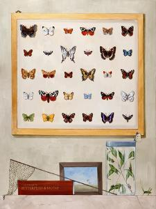 The Butterfly Collector, 2012-13 by Rebecca Campbell
