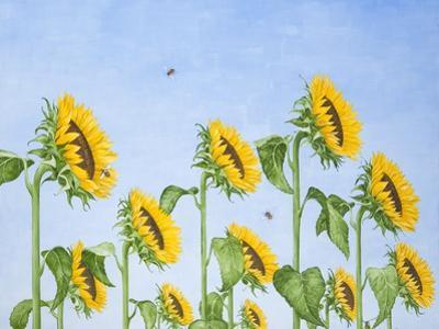 The Sun Worshippers, 2011 by Rebecca Campbell