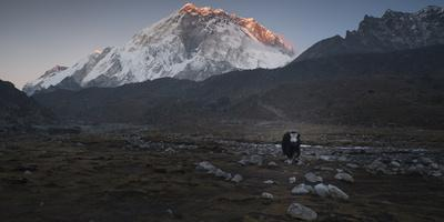 Along The Path To Mount Everest Base Camp
