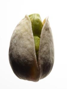 A Pistachio Nut by Rebecca Hale