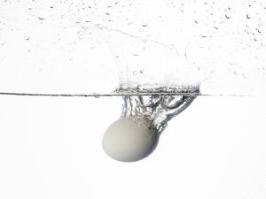 A White Bird's Egg Dropped into Water by Rebecca Hale