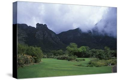 Kirstenbosch National Botanical Gardens in Cape Town, South Africa