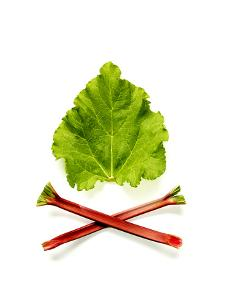 Rhubarb Leaves Contain a Toxic Substance and are Poisonous, Even Though the Stalks are Edible by Rebecca Hale