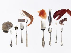 Various Forks Used for Oysters, Caviar, Sushi, Shrimp, Fish, Sardines, Lobster and Octopus by Rebecca Hale