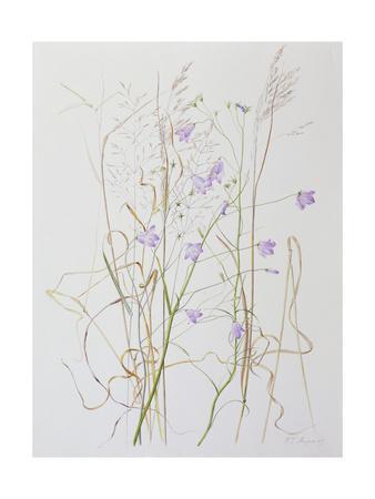 Harebells in Grass, 2003