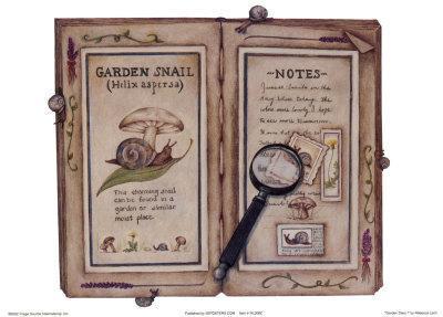 Garden Diary I