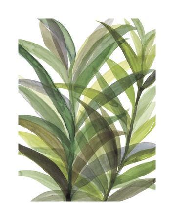 Tropical Greens II