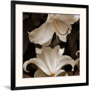 White Lilies by Rebecca Swanson