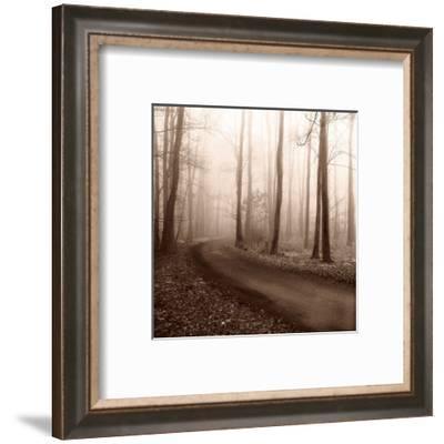 Recollection-Erin Clark-Framed Art Print