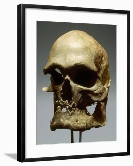 Reconstruction of a Skull of a Cro-Magnon Man Photographic Print by |  Art com