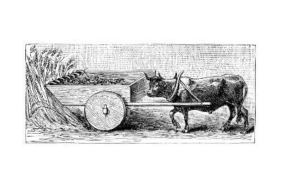 Reconstruction of Reaping Machine Used in Gaul in Ancient Roman Times, as Described by Pliny, C1890--Giclee Print