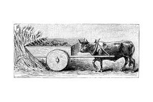 Reconstruction of Reaping Machine Used in Gaul in Ancient Roman Times, as Described by Pliny, C1890
