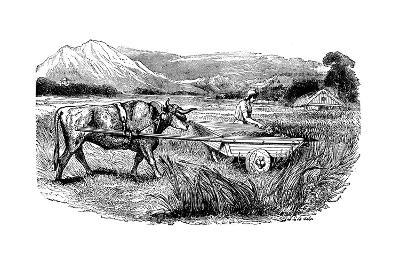 Reconstruction of Roman Reaping Cart, as Described by Pliny, Engraving, 1860--Giclee Print