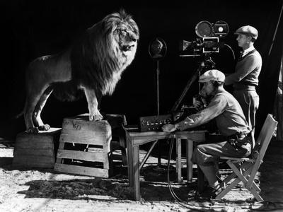 https://imgc.artprintimages.com/img/print/recording-of-the-lion-roar-for-the-introduction-of-mgm-films-c-1920-1930_u-l-q1c49130.jpg?p=0