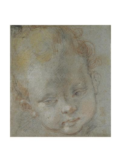 Recto: Head of a Child (Black, Red, White, Pink, and Yellow Chalks on Bluish-Grey Paper)-Federico Fiori Barocci-Giclee Print