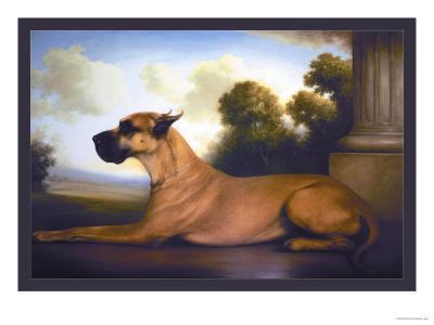 Recumbent Great Dane-Christine Merrill-Art Print