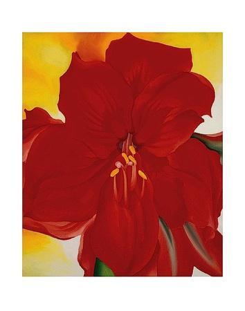 https://imgc.artprintimages.com/img/print/red-amaryllis-1937_u-l-f8cj130.jpg?p=0