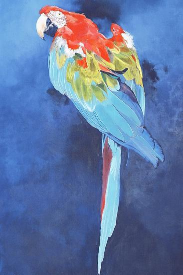Red and Blue Macaw, 2002-Odile Kidd-Giclee Print