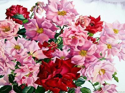https://imgc.artprintimages.com/img/print/red-and-pink-roses-2008_u-l-pjfl0o0.jpg?artPerspective=n