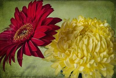 Red and Yellow-Bob Rouse-Giclee Print