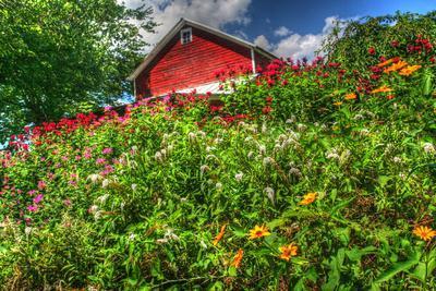 https://imgc.artprintimages.com/img/print/red-barn-and-flowers_u-l-q10pnpr0.jpg?p=0