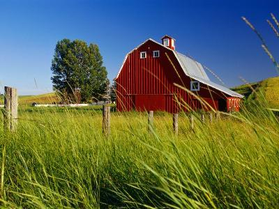 Red Barn in Long Grass-Bob Krist-Photographic Print