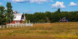 Red barn in meadow, Knowlton, Quebec, Canada