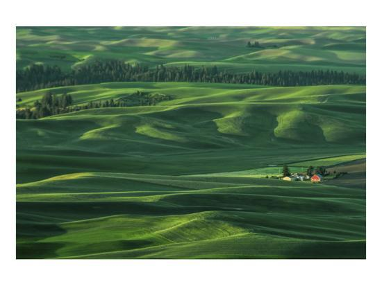Red Barn in the Morning Light-Don Schwartz-Art Print