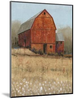 Red Barn View I-Tim O'toole-Mounted Art Print